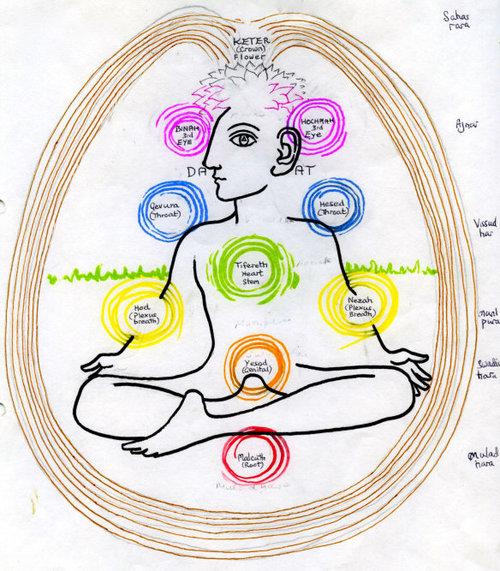tree-of-life-chakras.jpg